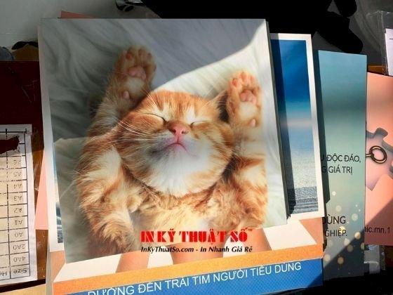 Tranh Mèo - Hoàng thượng